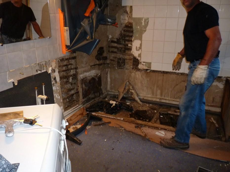 Salle de bain attaque mérule